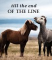 till the end of the line